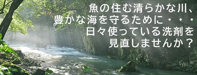 魚の住む清らかな川、豊かな海を守るために・・・ 日々使っている洗剤を見直しませんか?