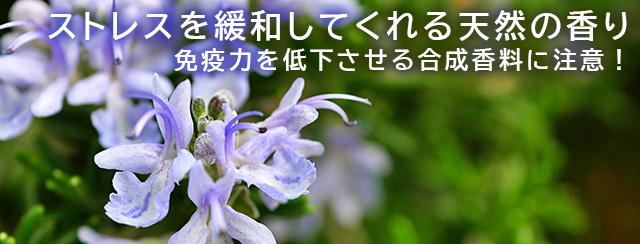 ストレスを緩和してくれる天然の香り 免疫力を低下させる合成香料に注意!