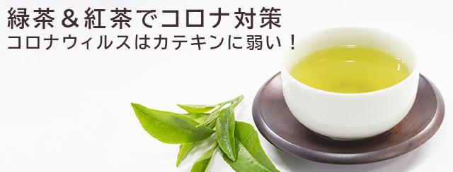 緑茶&紅茶でコロナ対策 コロナウィルスはカテキンに弱い!