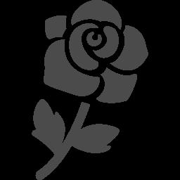 薔薇ポリフェノールでエイジングケア